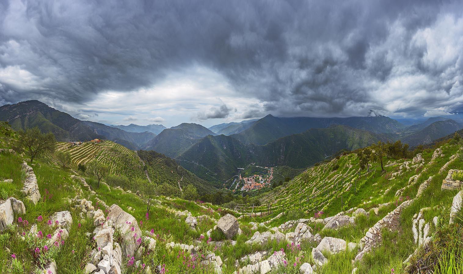 Airole, Ligurien: Bio-Weingut A Trincea oberhalb des ligurischen Ortes Airole im Roja-Tal. Zweizeiliges Panorama, zusammengesetzt aus  46 Aufnahmen. Originalgröße 300x180 cm | © Reinhard Podolsky